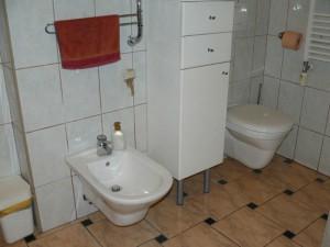 Alte WC und Bidet